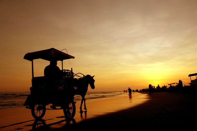 Parangtritis Beach silhouette horizon over water transportation mode of transport traveling beach silhouette photography sunset travel