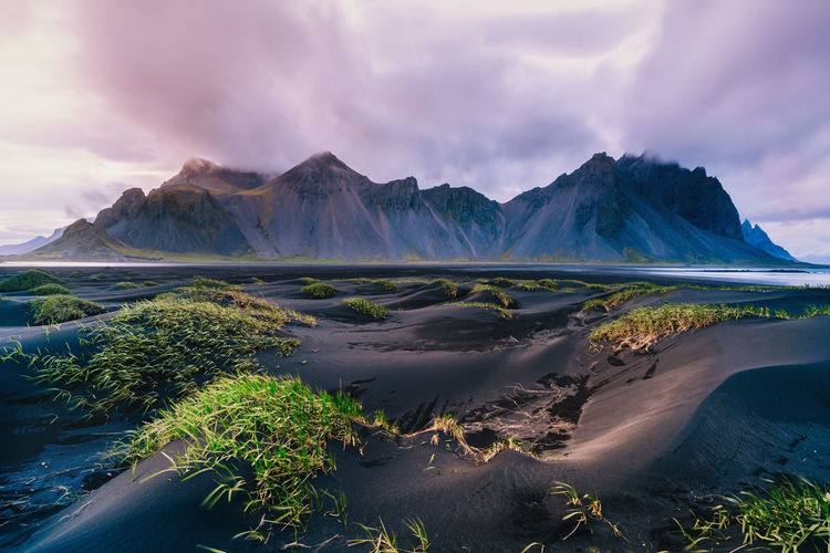 Vestrahorn Cloud Desert Dunes Green Höfn Iceland Nature Rock Scenic Stokksnes Travel Beach Black Landmark Landscape Mountain No People Outdoors Purple Remote Sand Sky Vestrahorn