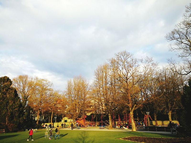 Playpark Rosengarten Bern Tree Park - Man Made Space Sky Grass Cloud - Sky