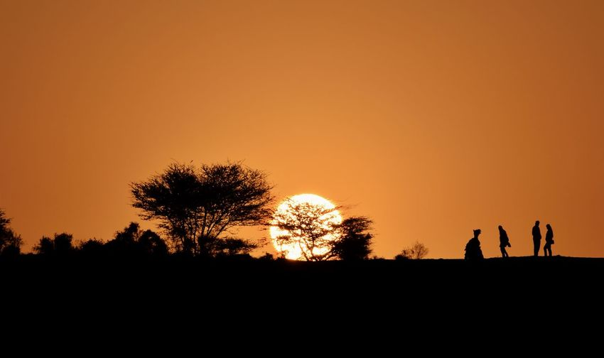 Sunrise in Desert.! India Rajasthan Jaisalmer Sunlight Orange Sky Tree Sunset Men Togetherness Silhouette Standing Sky Sand Dune Desert Camel Capture Tomorrow EyeEmNewHere