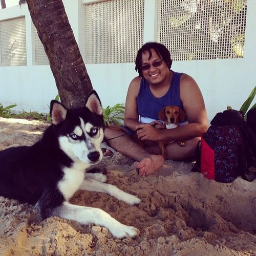 Salchicha Siberian Husky Drako romeo perro dog followcarlitosgonzalez tumblr dhomgonzalez tumblrican qtmdam tojstah puertorico boricua borinquen