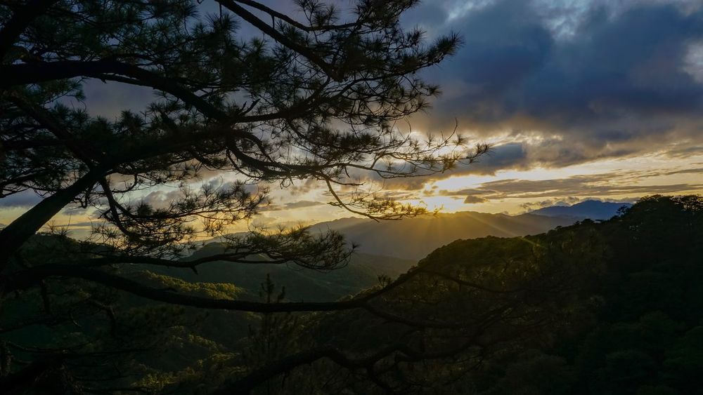 Sunset Mountains And Valleys Hiking Mountain View Mountain Tree Sky Beauty In Nature Cloud - Sky Plant Scenics - Nature Tranquility Nature Sunset Tranquil Scene No People Non-urban Scene Idyllic Growth Environment Land Outdoors Landscape Branch