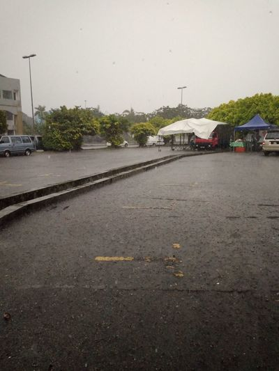 heavy rain Street Rain Wet Water Road Tree Extreme Weather Natural Disaster No People Sky Day Outdoors