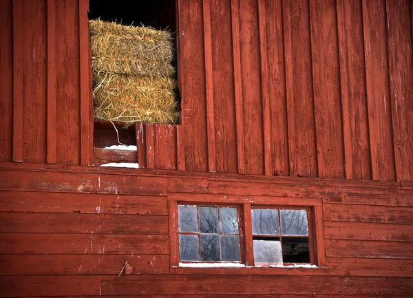 Architecture Barn Building Exterior Built Structure Farm Old Pattern Refelctions Straw Window Wood Wood - Material Wooden Color Palette