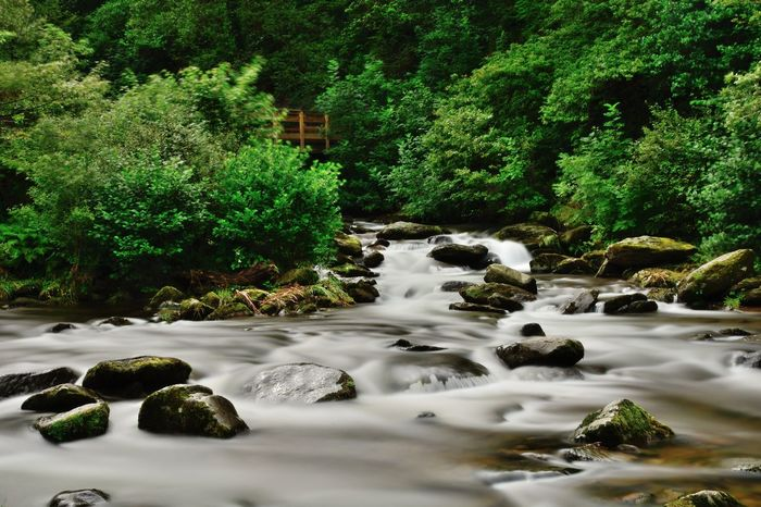 Check This Out Devon EyeEm Best Shots EyeEm Nature Lover Flowing Water Nature Taking Photos Tranquility Watersmeet Beauty In Nature Day Forest Idyllic Landscape Long Exposure Motion Nature_collection No People Non-urban Scene Outdoors River Scenics Tranquil Scene Water Waterfall