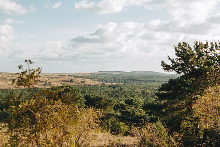 Curonian Spit Lietuva Lithuania Arid Climate Beauty In Nature Cloud - Sky Day Environment Growth Idyllic Land Landscape Mountain Nature Nida No People Non-urban Scene Outdoors Plant Remote Scenics - Nature Sky Tranquil Scene Tranquility Tree