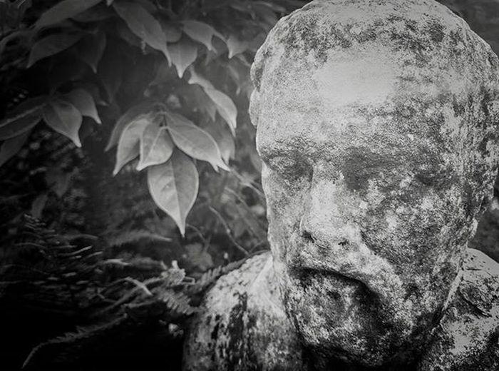Stone Statue Blackandwhite Editedwithsnapseed Plasticlens Richtone Hidcotemanor Nationaltrust