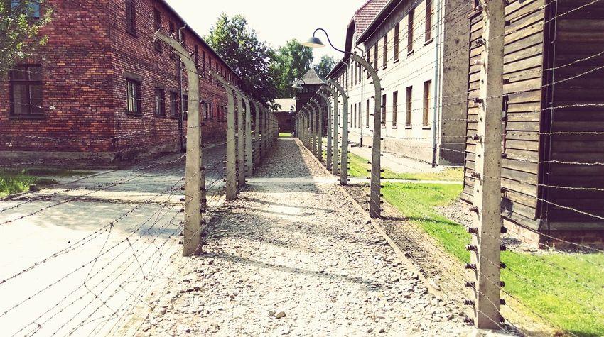 Museum Auschwitz  Ww2 Silence Is A War Crime