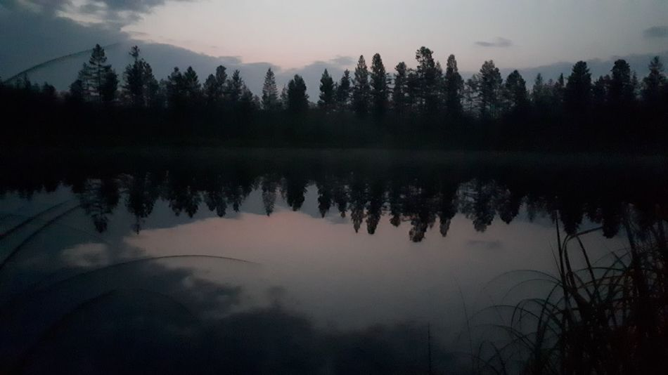 Astronomy Tree Water Dawn Lake Star - Space Fog Reflection Forest Pinaceae