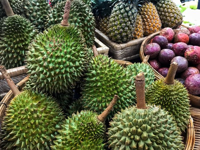 In April - May every year is a period of Thai fruit with durian, mangosteen, pineapple mango to eat. Thaifruits Pineapple🍍 Passion Fruit Durian Growth Plant Green Color Freshness Fruit Healthy Eating Food Large Group Of Objects Succulent Plant Cactus Retail  Tree Beauty In Nature Abundance No People Food And Drink Nature Day Wellbeing For Sale