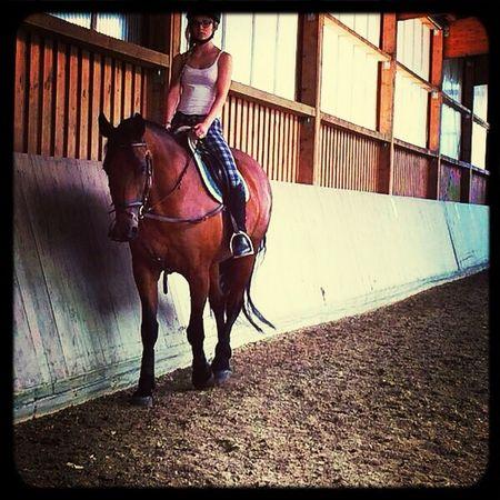 My big love ? Horse Horse Riding Love Pet