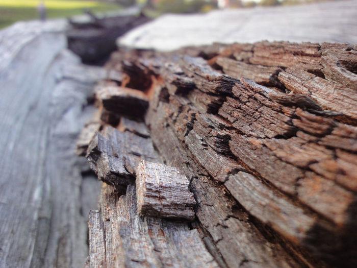 Brennholz Winter Altbau Altes Holz Baum Close-up Holzstapel Holzstapp+ Holzstruktur Morsches Holz Nature Outdoors Pattern Plant Textured  Wood Wood - Material