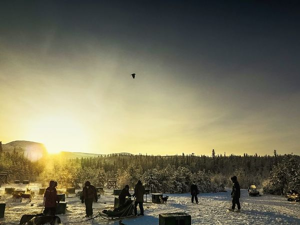 Dawn Yukon Yukon Territory Shades Of Winter Flying Silhouette Large Group Of People Leisure Activity Mid-air Outdoors People An Eye For Travel