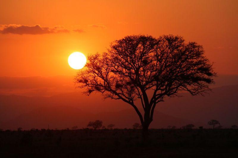 Kenya Sunset Beat-fighter Landscape follow me on my trip through kenya