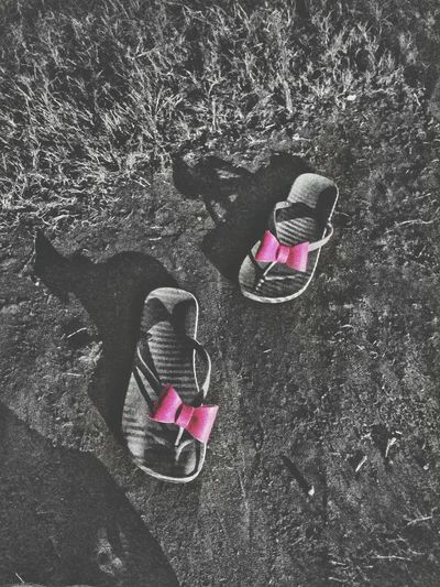 High angle view of pink shoes