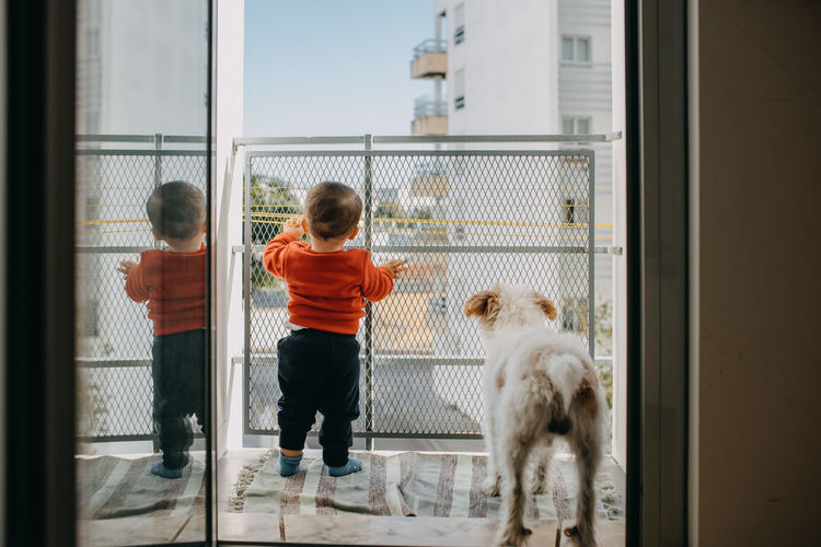 Rear view of boy standing in balcony with dog