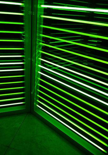 Green Color Exhibition Art Carsten Höller Milan Italy Pirelli Hangarbicocca
