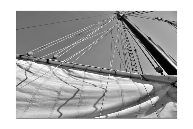 Hoisting The Sails 2 Aboard The Alma 1869 80 Ft. Scow Schooner Sailing San Francisco Bay Bnw_summer Memory's Bnw_friday_eyeemchallenge A Day On The Bay Ships Rigging Mast Pulleys Ropes Monochrome Lovers Monochrome Shadows Black & White Black & White Photography Black And White Black And White Collection  Canvas Sails Rope Ladder Nautical Vessel Wooden-hulled Flat-bottomed Sailing Ship