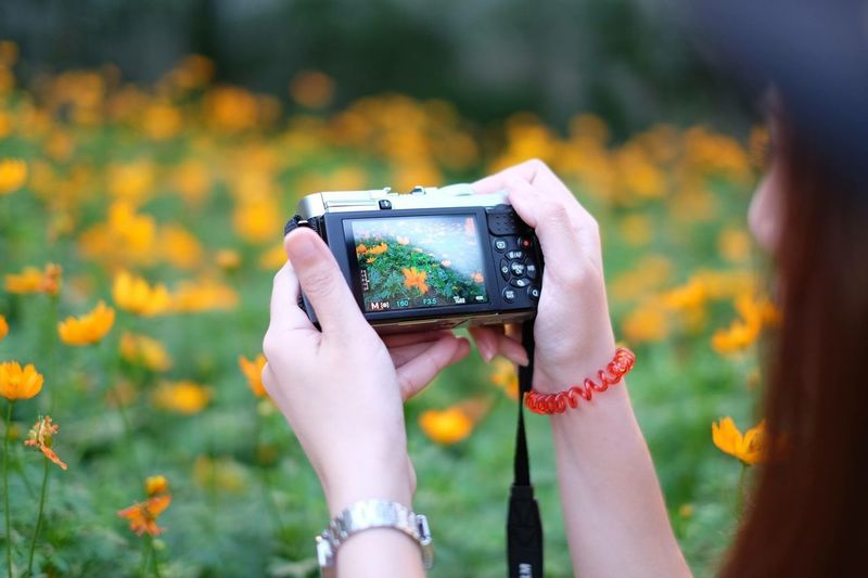 Close-Up Of Woman Photographing Flowers