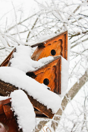Beauty In Nature Birdhouse Birdhouse In Snow Close-up Cold Cold Temperature Covered Covering Day Frozen Landscape Nature No People Outdoors Season  Sky Snow Snow Covered Tranquil Scene Tranquility Weather White White Color Winter Wood - Material