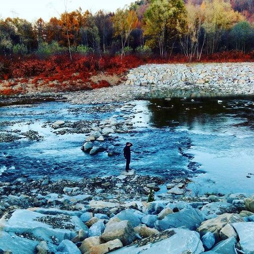 Le me :D Autumn Nature Traveling November River Forest Outdoor Landscape Travel Spacer Malopolska