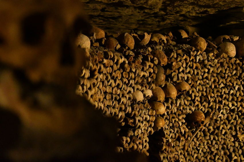 Bones Darkness France Freihand Gruselig Paris Paris, France  Sightseeing Travel Traveling Beauty In Nature Bone  Catacombes Catacombes De Paris Catacombs Close-up Day Dunkel Honeycomb Katakomben Knochen Nature No People Outdoors Pattern Scary Scary Places Skull Skulls Skulls And Bones Spot Textured  Travel Destinations