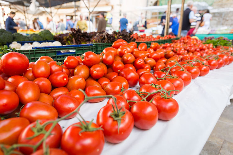 High angle view of tomatoes and vegetables for sale at market stall