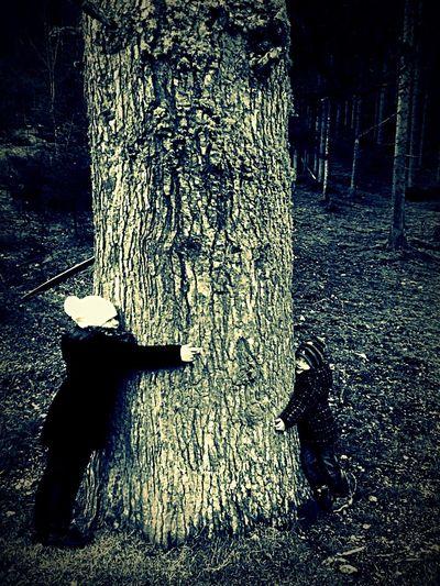 Hugging A Tree Childhood Kindheit Umarmung Baum Taking Photos Hello World Enjoying Life