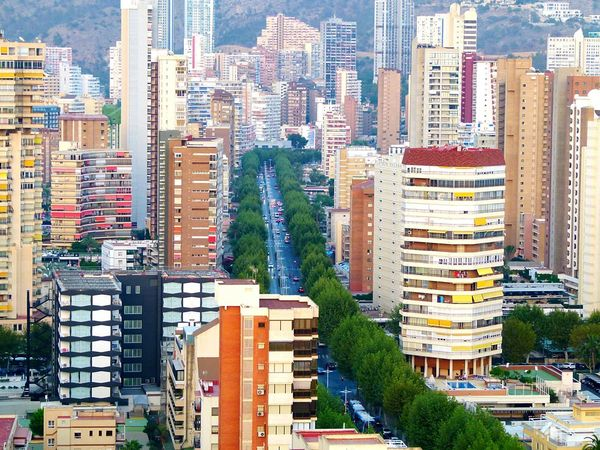 Apartment Rooftops Apartment Buildings Apartments Buildinglovers Buildings 1000 Impactos De Benidorm Benidorm1000 Benidorm 2015 Benidorm Spain Benidorm City Benidorm VisitBenidorm Road Trees Tree Lined Street Tree Lined Drive Tree Lined Cityscape Cityscapes The Architect - 2016 EyeEm Awards