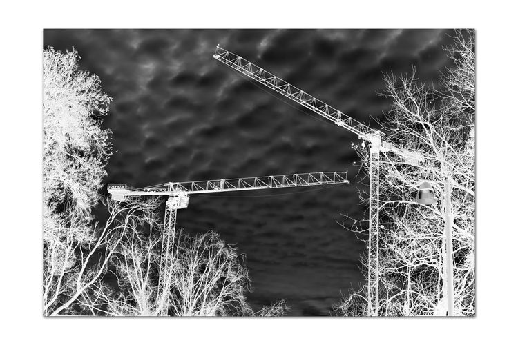 Construction Cranes 1 Machine Hoist Potain Cranes 17.62° Latticed Boom Jib Port Of Oakland,Ca. Jack London Square Heavy Equipment Transport Materials Tower Crane Industry Manitowoc Co. Bigge Self-erectting Top-slewing Monochrome Lovers Monochrome Illuminated Black & White Black & White Photography Black And White Black And White Collection  Architecture Sky And Clouds Trees Suffolk Construction Abstract Tall Crisscross Grid