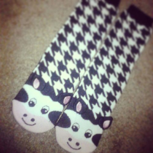My Cow Socks (;
