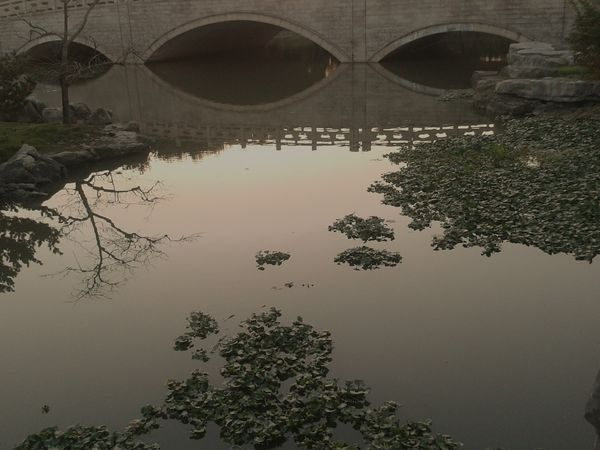 Reflection Water Tranquility Nature Tongli China Peaceful View Peaceful Evening Peace And Tranquility Peacefulness Peaceful Place Peace Of Mind Peaceful Moments