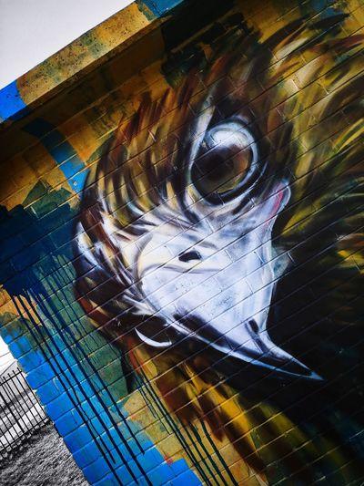 Streetphotography Graffiti Art Conder Canberra