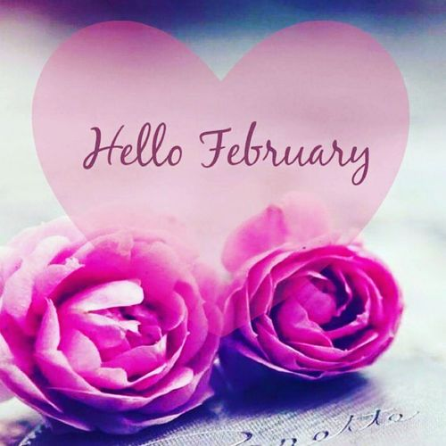 Hello February 2016 Love Is In The Air Such Beauty Love&friendship Love&Affection  ❤ Myhappymonth Colorsplash EyeEm Followme This Is What Love Looks Like  Inspiring Expression