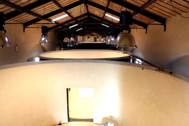 Architecture Built Structure Day Ex Mattatoio Illuminated Indoors  Lighting Equipment Museo No People Testaccio