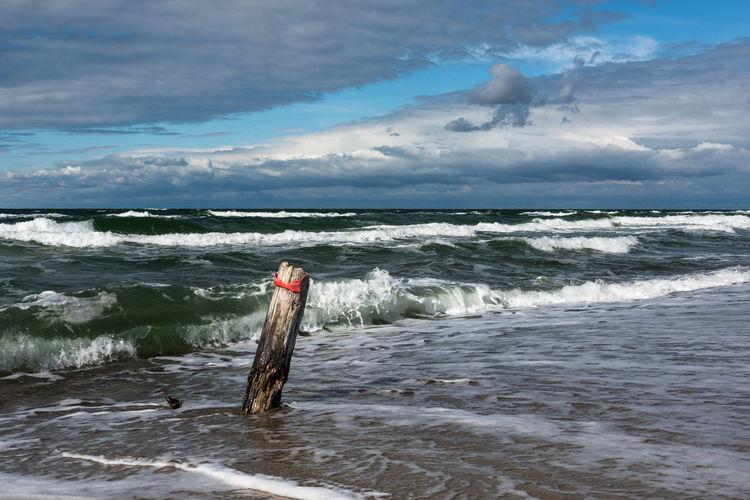 Brandung Deutschland Himmel Ostsee Weststrand Wolken Darß Keine Menschen Küste Natur Stamm Tag Wellen
