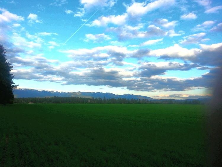 Check This Out Kalispell Montana Taking Photos Photography Montana Nature Trees Rocky Mountains Big Sky Country Gods Country
