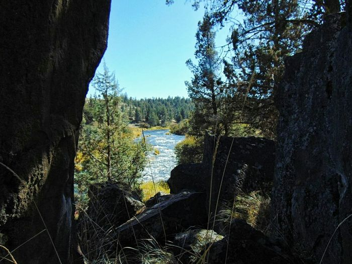 Perspectives On Nature Water Nature Outdoors No People Beauty In Nature River Eagle Crest Eastern Oregon Oregon Adventure Boulders Tree Tree Trunk Day Scenics
