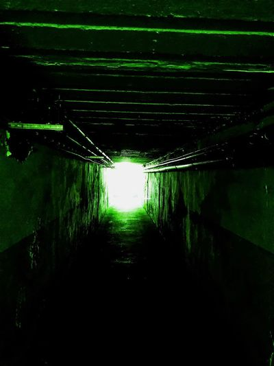 Tunnel EyeEmNewHere EyeEm Selects EyeEm Gallery EyeEm Best Shots Water No People Illuminated Nature Reflection Direction The Way Forward Outdoors Night Diminishing Perspective Tunnel Light Light At The End Of The Tunnel Green Color Lighting Equipment Dark Architecture Lake Wet Tranquility