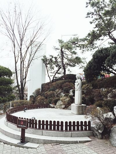 Stmarys Hospital South Korea Winter Wintertime Army Military