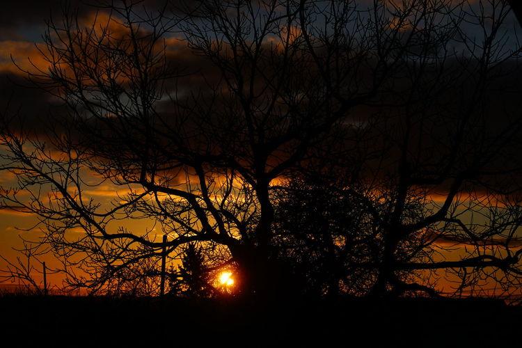 good Morning, 29.12.2017 My Point Of View Landscape Landscape_Collection Landscape_photography Sunset Sky Sky And Clouds Cloud - Sky Clouds And Sky Cloud Su