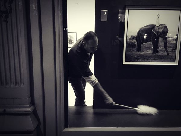 Street Photography Art Gallery Photos For Sale Owner Humour Elephant Photo Owner Cleaning Window One Person One Animal Tonal Central London Urban Exploration Fresh On Eyeem  EyeEm Best Shots The Week Of Eyeem Streetphotography Fine Art Photography The Minimal Experiment Simple Photography Fine Art Night