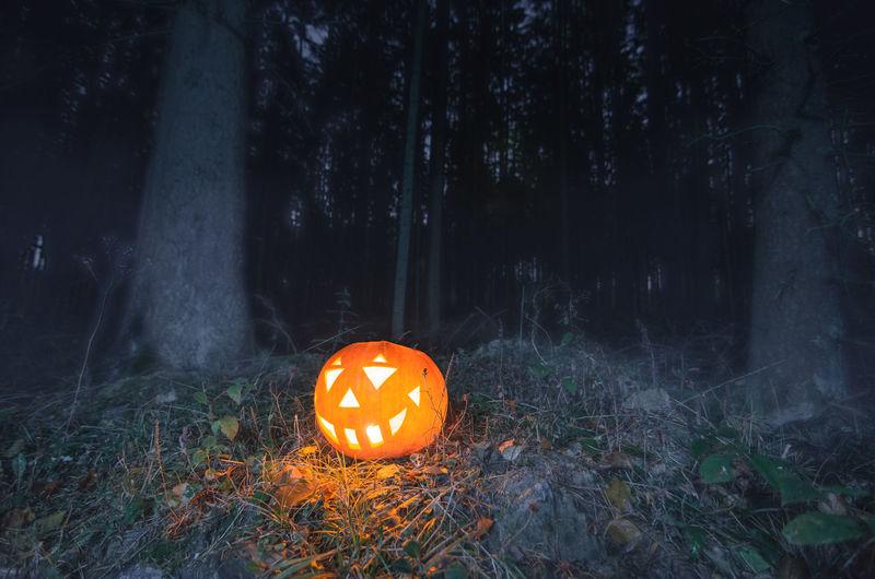 View of illuminated pumpkin on field at night
