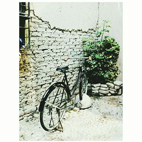 Exposition Casacor Bicicle Beutiful  Eye4photography  Taking Photos Peru Barranco Fantastic Affternoon