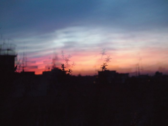 Sunset Sunset_collection Urban Urban Skyline Urban Landscape Sky Skyporn Skyline Dreamy Summer Pshycodelic Summer Vibes Plant Contrast Colors Shades Of Sky Cityscape Sky_ Collection View Magical Multi Exposure Sky Porn Photooftheday EyeEmNewHere Millennial Pink