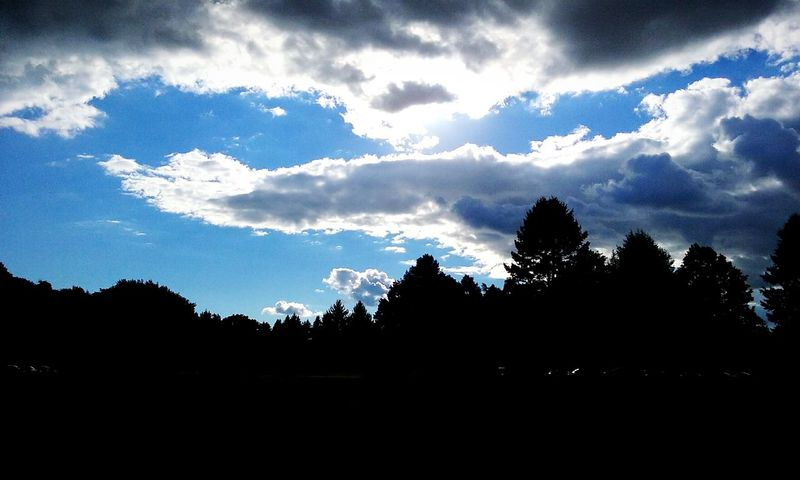 Light in the sky you know how I Silhouette Tree Outline Sky Nature Dark Beauty In Nature Scenics Calm feel
