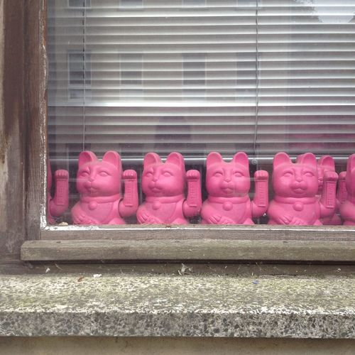 Arrangement Design Full Frame In A Row Indoors  Lucky Cat Pink Window