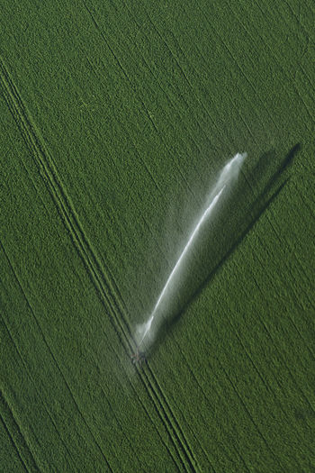 High angle view of irrigated field