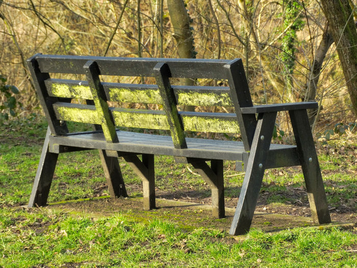 Park bench. Plant Tree Seat Wood - Material Land Grass Field Nature Day No People Park Bench Empty Green Color Tranquility Chair Absence Table Park - Man Made Space Outdoors Park Bench