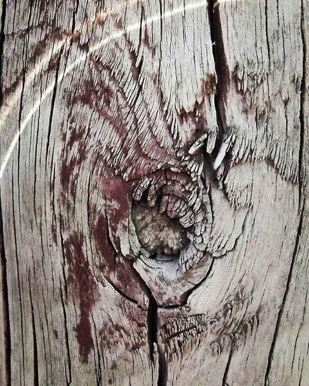 Wmm_brown Post Wood Woodenpost Grain Brown